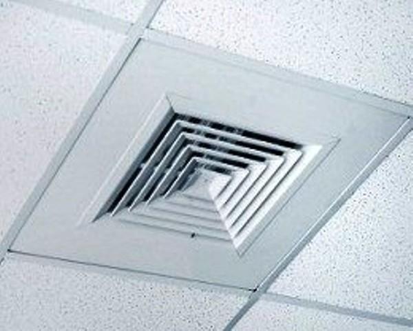 Ceiling Pionare Enterprises Ltd