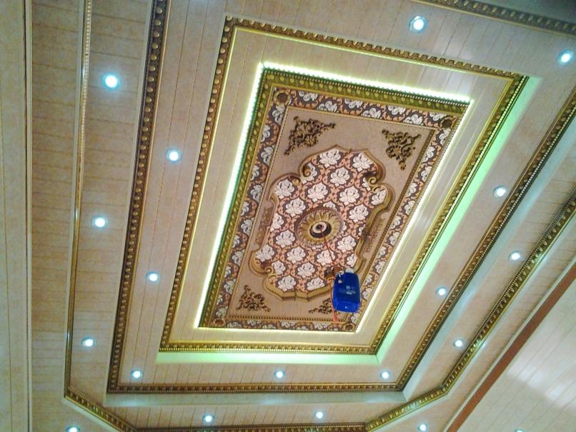Ceiling Suppliers Trinidad Nakedsnakepress